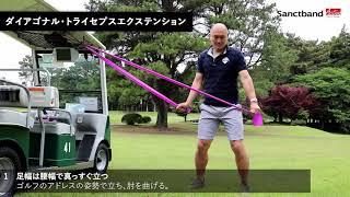 【Sanctband x ゴルトレ】ダイアゴナル・トライセプスエクステンション